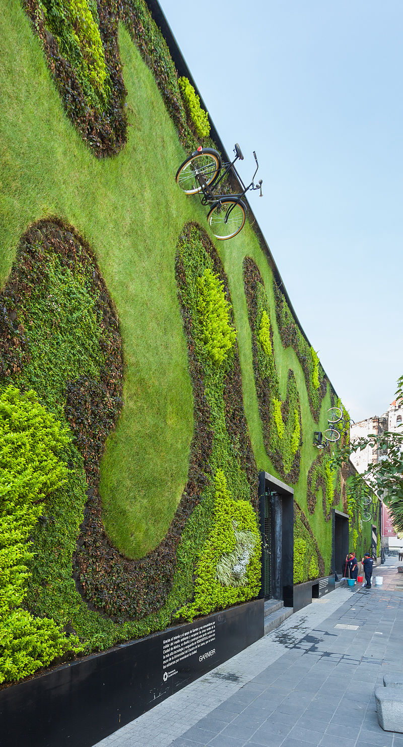 800px-Jardín_vertical_en_la_Universidad_del_Claustro_de_Sor_Juana,_calle_Regina,_México_D.F.,_México,_2013-10-16,_DD_01