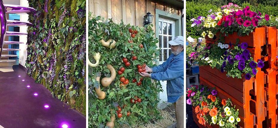 Jardines verticales tendencia inalcanzable o quiza no for Jardines verticales concepto
